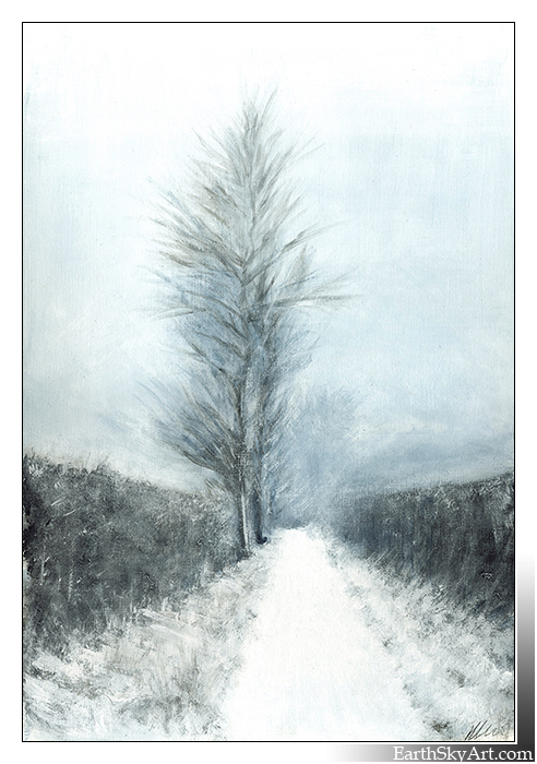 Winter Hedgerows